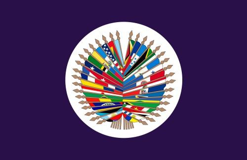 211.Organizacijaamerikanskihgosudarstv.jpg
