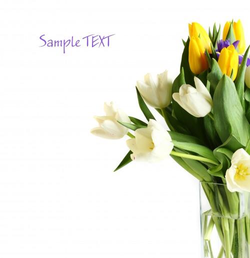 fotolia_21394244.jpg