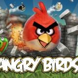 105503333x2000POLETangrybirdsIGRAgame