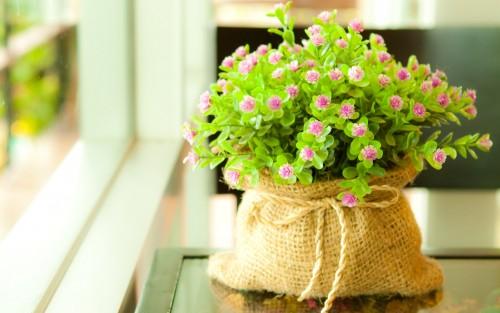 Flowers68.jpg