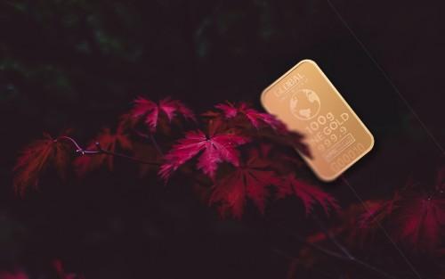 goldbusiness21.jpg