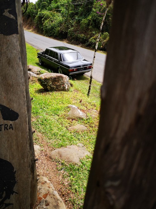 COSTARICACOUNTRYLIMOUSINE.300DMERCEDESW123TOURS.jpg