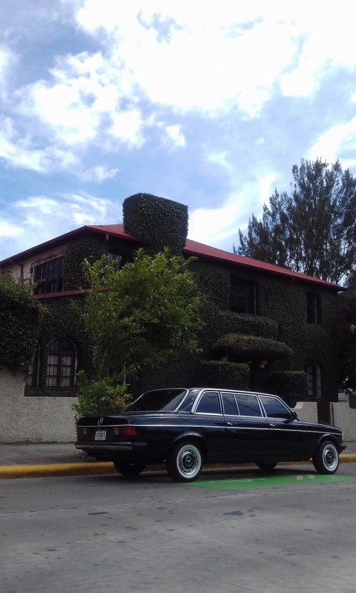 DOWNTOWNMANSIONSANJOSECOSTARICALIMOUSINEMERCEDES300DLANG.jpg