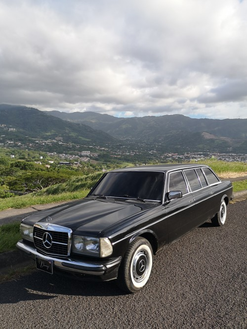ESCAZUMANSIONMOUNTAINS.MERCEDESW123LIMO.jpg